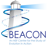BEACON_Logo_May_2010